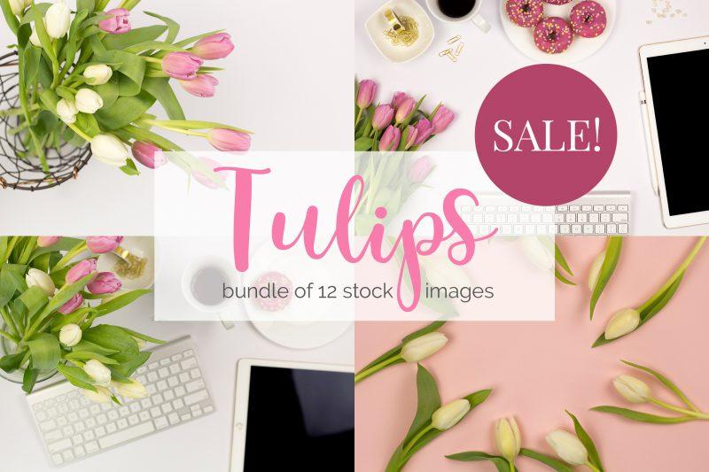Tulipános stock fotók